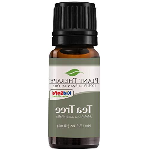 Plant Therapy Tea Tree Essential Oil | 100% Pure, Undiluted,